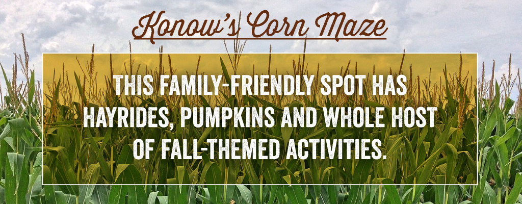 This family-friendly spot has hayrides, pumpkins and whole host of fall-themed activities