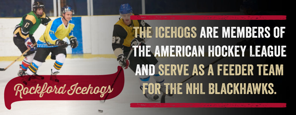 The icehogs are members of the American Hockey League and serve as a feeder team for the NHL Blackhawks.
