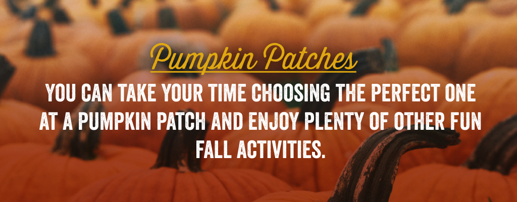 You can take your time choosing the perfect one at a pumpkin patch and enjoy plenty of other fun fall activities