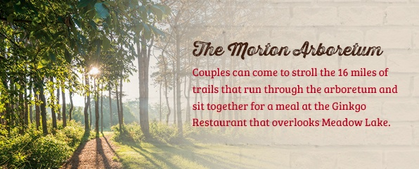 The Morton Arboretum